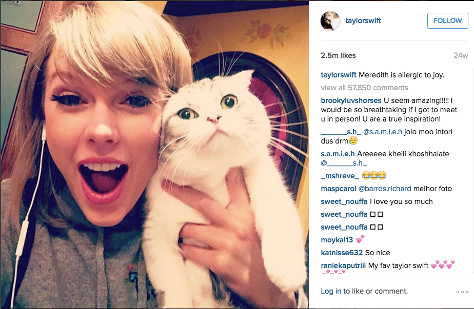 Taylor Swift posing with her cat