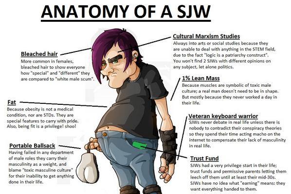 anatomy of a social justice warrior meme