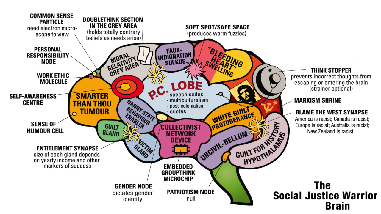 social justice warrior brain