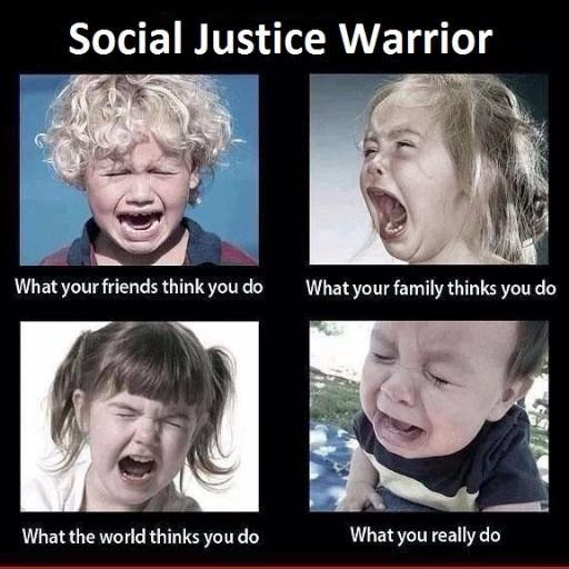 social justice warrior meme