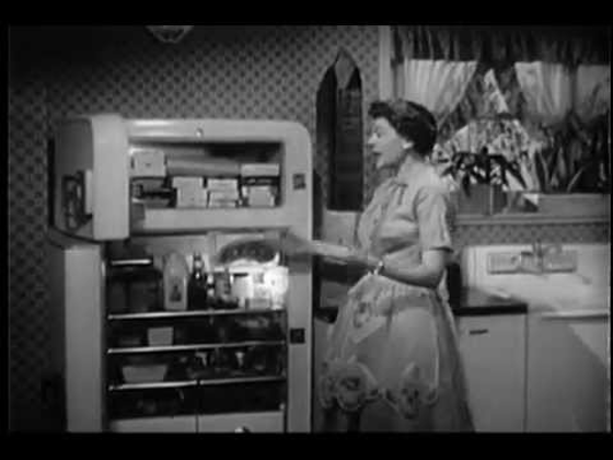 Harriet Nelson stands in front of her refrigerator with the doors open.